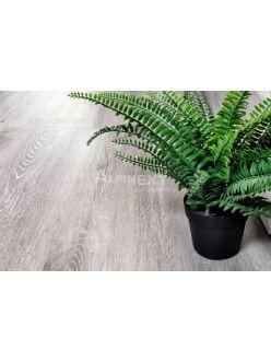 Кварц-виниловый ламинат Alpine Floor Classic ЕСО134-5 Ясень Серый